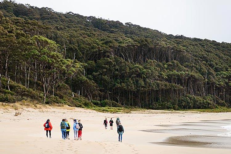 depot beach walk