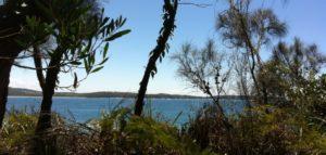headland walk south coast nsw