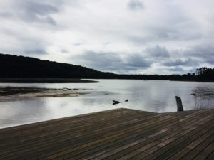 corunna lake and jetty
